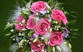 Wallpaper Flowers gift of pink roses ...