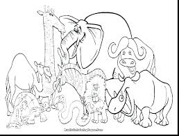 Zoo Animal Coloring Page Amazing Zoo Animal Coloring Pages Animals