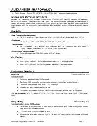 resume ravishing senior programmer analyst resume samples college programmer resume resumeprogrammer resume medium size programmer analyst resume sample
