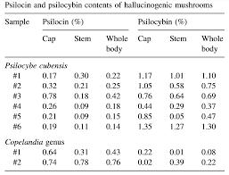 Psilocybe Cubensis Gold Cap Mushroom Information Shroomology