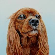james ruby works dog portrait gallerythis page contains a small rotating collection of past portraits on thumbnail image to view full painting