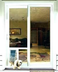through the wall doggie doors pet doors reviews pet door reviews patio pet door insert in glass pet door dog doors pet doors wall entry pet door large