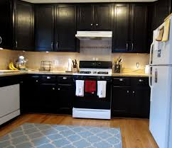 Stain Oak Kitchen Cabinets Furniture Simple Paint Kitchen Cabinets With General Finishes Gel