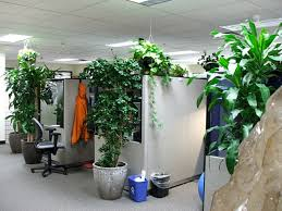 environmentally friendly office. 5 Things Make Your Office More EcoFriendly Popular Science Environmentally Friendly
