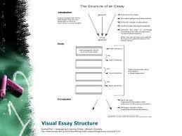 cv personal statement software developer case study eleven online argumentative essay outline worksheet