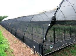garden netting lowes. Garden Nets Absolutely Smart Netting For Interesting Ideas Reduces Pests Lowes . Heron Net F