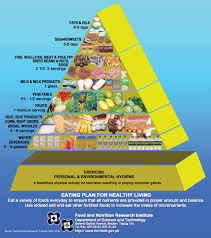 daily food nutrition chart nutrition daily book on nutritional value of food nutrition daily