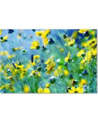 trademark fine art flower power canvas wall art on wall art flower power with spring shopping special trademark fine art flower power canvas wall art