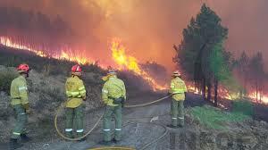 Oposición Peón especializado en lucha contra incendios online