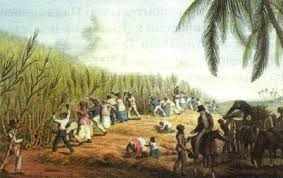 Борьба война за независимость в Латинской Америке в начале xix  Сбор сахарного тростника в Латинской Америке Литография 1820 х гг