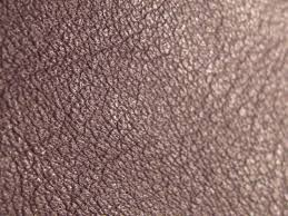 semi is aniline leather skin can always be treated and cleaned with effektiv care clean