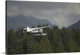 float plane flying tofino british columbia canada canvas on airplane canvas wall art canada with float plane flying tofino british columbia canada wall art