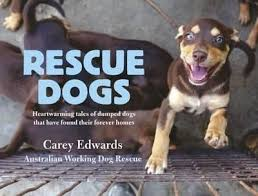 Image result for pics of rescue dogs