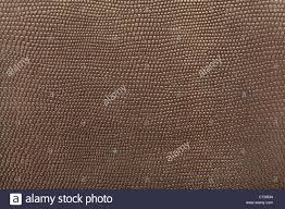shark skin texture background
