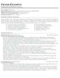 How To Write A Government Resume Government Resume Sample Example Of