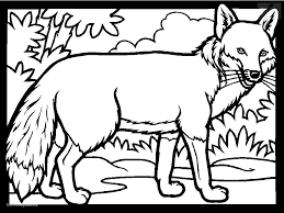 Small Picture Animals Birds Fox Coloring Page Fox Coloring Pages In Animals