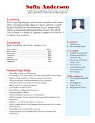Grocery Store Cashier Resume. grocery ...