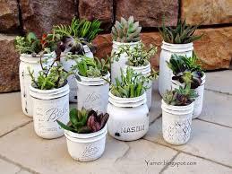 #8 I'm a Yarner DIY succulent mason jar garden