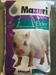 Mazuri Elder Pig Food Feeding Chart What Do You Feed Mini Pigs Avalonit Net