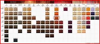 Schwarzkopf Igora Personality Color Chart 11 Symbolic Igora Personality Color Chart