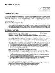 Write,design,rewrite A Professional Resume Writing Service ...