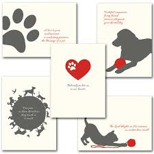 sympathy card pet pet sympathy assortment pet sympathy card assortment