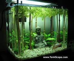 Cool Aquariums For Sale This Is A Really Cool Scene Doesnt Even Need Fish Tank Scape