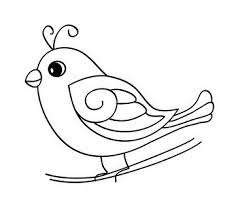 baby birds drawing for kids. Simple Baby Baby Bird Coloring Pages For Kids  Photo6 Throughout Birds Drawing For Kids