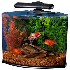 petco betta fish tanks. Perfect Tanks Aquariums At Petco Best Accent Chairs And Aquarium On Betta Fish Tanks F
