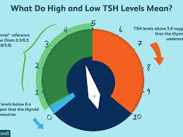 High And Low Tsh Levels Meanings And Variations