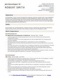 Skills Job Resumes Job Developer Resume Samples Qwikresume