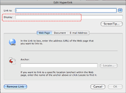 image demonstrates location of display box in edit hyperlink dialog