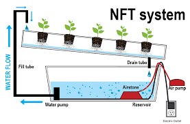 nutrient technique indoor organic growing system for the home rh hydroponics name diy nft system nft system with lettuce