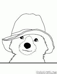 Disegni Da Colorare Orso Paddington
