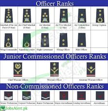 Indian Air Force Salary Chart Pakistan Air Force Ranks And Badges Salary Pay Scale