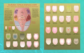 Ayurveda Tongue Chart Tongue Chart 8 5x11 Double Sided Pictures Chart Poster