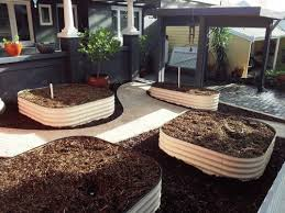 Small Picture 20 best Home Veggie Patch images on Pinterest Gardening