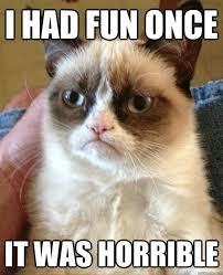 Angry Cat, a.k.a Grumpy Cat. A legend in his own time. Online meme ... via Relatably.com
