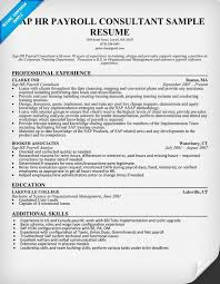 Sap Hr Resume Sample Delectable SAP HR Payroll Consultant Resume Sample Resumecompanion