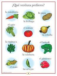 best 25 spanish sentences ideas