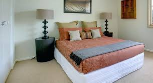 bed bug removal bed bug services bed bug removal diy