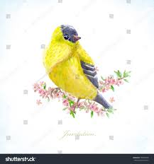 invitation card with a yellow bird on flowering branches watercolor painting