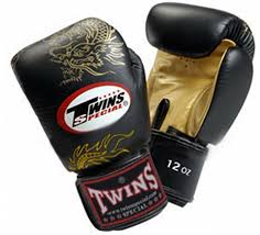 twins muay thai gloves review