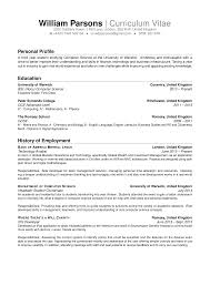 Personal Statement Sample For Resume Adorable Personal Summary Sample Resume With Additional Cv Personal 13