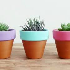 Easy Painted Terracotta Pots {Plants and Planters}