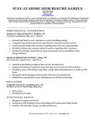 Work Resume Example Gorgeous StayAtHome Mom Resume Sample Writing Tips Resume Companion