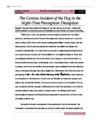 the curious incident of the dog in the night time perception  page 1 zoom in