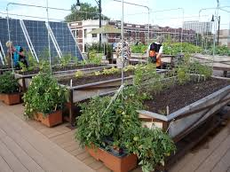 Beautiful Small Vegetable Garden Design For House Making Guide ...