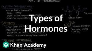 Types Of Hormones Video Khan Academy