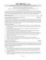 Safety Manager Resume Safety Officer Resume Sample Doc New Project Manager Resume Sample